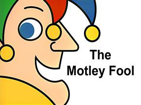 motley fool resize