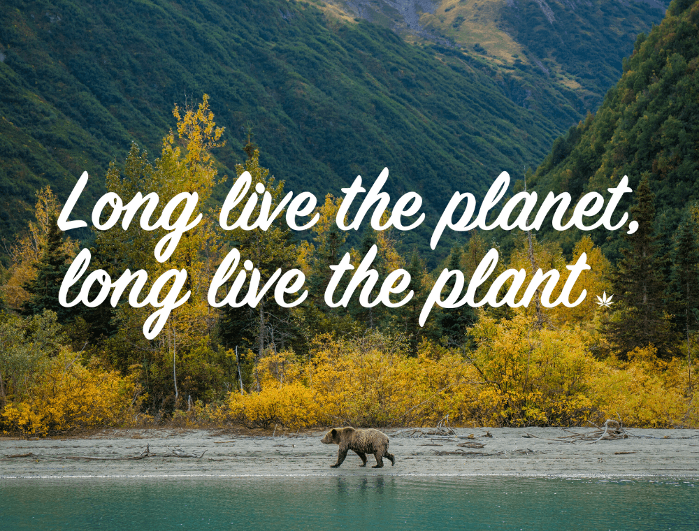 Long live the planet long live the plant
